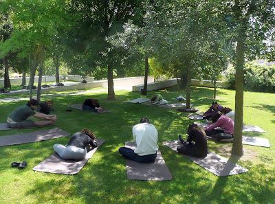yoga no jardim da cerca