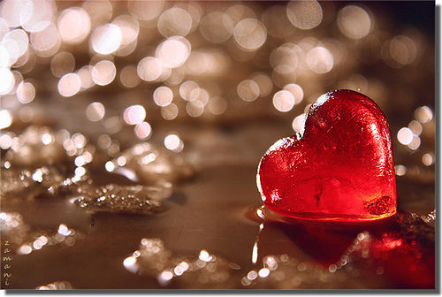 Love_heart_wet